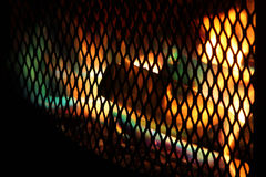 Firepit with color flames Royalty Free Stock Photo