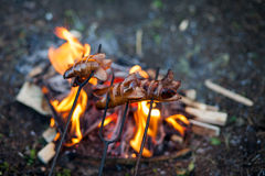 Fireplace in the backyard and sausages, cooking on the fire Royalty Free Stock Photo