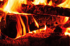 Fireplace with birch firewood and flame. Royalty Free Stock Photos