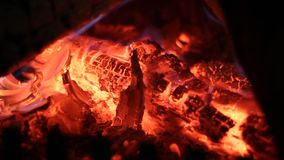 The Fireplace. Burning Wood In The Fireplace. Close up. No sound stock video footage