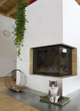 Fireplace and a cat. Stock Image