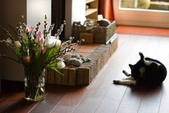Fireplace with cat and springflowers Stock Photography