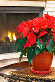 Fireplace and flower Stock Photography