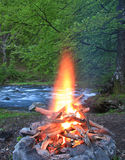 Fireplace in the forest. Near the river royalty free stock photo