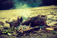 Fireplace in forest clearing. Stock Image