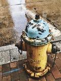 Fireplug Royalty-vrije Stock Foto