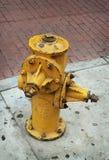 Fireplug. Yellow fireplug on the street of Los Angeles stock photos