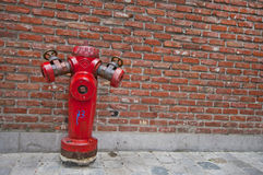 fireplug Obrazy Royalty Free