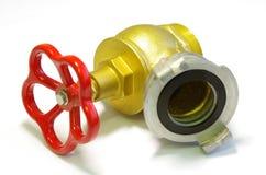 fireplug Obrazy Stock