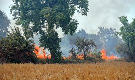 Fires burn the crops near Cambodian Killing Fields Stock Image
