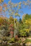Fires Creek Park Stock Photography