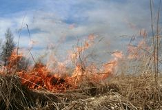 Fires Flare. Meadow fire sends out large smoke clouds after burning a grass wastelands, natural disaster, burn off royalty free stock image