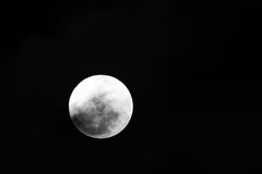 Firest Full Mini Moon 2014 Royalty Free Stock Images