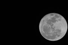 Firest Full Mini Moon 2014 Stock Photography