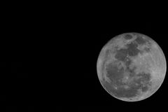 Firest Full Mini Moon 2014 Stock Image