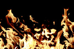 Firestorm. Open fire isolated on black bacground Stock Photos
