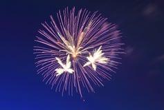 Firesworks em New York Imagem de Stock