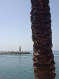 Firetower och palmträd arkivfoton