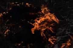Fireup immagini stock