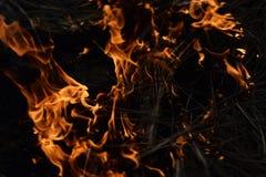 Fireup, schöne Helligkeit des hellen, schönen Glanzes Stockfoto