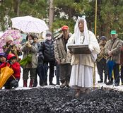 Firewalking at Shinto Ceremony. NAGANO, JAPAN - FEB 4, 2013: Shinto Ascetics firewalk during a Shinto ritual. Known as Yamabushi, they are mountain hermits with royalty free stock photo