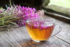 Fireweed healthy herbal tea. Mug of chamerion tea and bunch of medicinal herbs on background. stock photos
