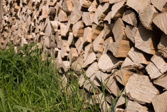 Firewood. S after the sawing wood Royalty Free Stock Image