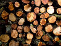 Firewood. Closeup of sorted heap of firewood stock photos