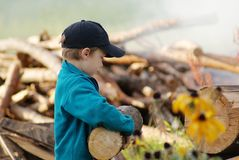 Firewood. Young village boy bringing hard firewood in front of woodpile Royalty Free Stock Image
