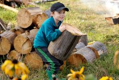 Firewood. Young village boy bringing hard firewood in front of woodpile Royalty Free Stock Images