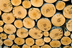 Firewood. Stack of wood background close up Stock Images