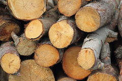 Firewood. Chopped wood for the fireplace Royalty Free Stock Photos