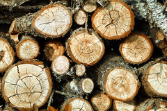 Firewood. Firewood stacked in a pile. Of varying thickness Stock Image