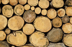 Firewood. Pile of firewood for the cold winter royalty free stock photography