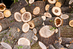 Firewood. A large pile of chopped firewood Stock Photos