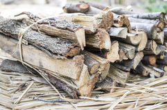 Firewood. From the tree in my farm. It is good for outdoor cooking Stock Photography