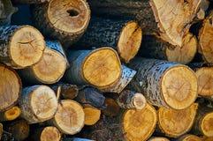 firewood Fotografie Stock