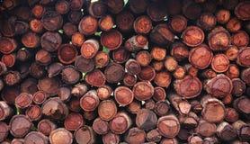 firewood Photographie stock libre de droits