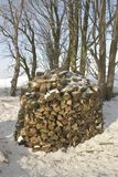 Firewood. A stack of fire wood in the snow stock images