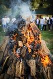 firewood Photo libre de droits