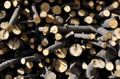 firewood Image libre de droits