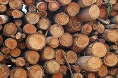 Free Firewood Stock Photo - 7362930