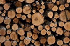 Firewood. The big stack of the firewood Royalty Free Stock Photo