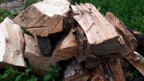 firewood Imagem de Stock Royalty Free