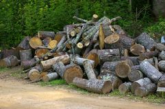Firewood. Photographed at Enota Mountain Resort, Hiawassee Georgia Stock Image
