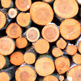 Firewood aheap. Closeup of sorted heap of firewood Stock Photo