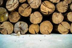 Firewood. Is any wooden material that is gathered and used for fuel. Generally,  is not highly processed and is in some sort of recognizable log or branch form royalty free stock image