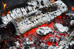 Firewood ash after fire Stock Photo