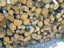 Firewood aspect - to winter cold days Royalty Free Stock Image