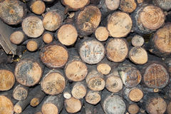 Firewood background front view. Stockpile Royalty Free Stock Image